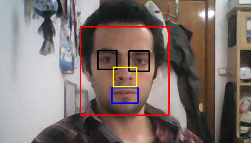 EmguCV - Face, Eye, Nose and Mouth Detection(Yüz, Göz, Burun ve Ağız Algılama)