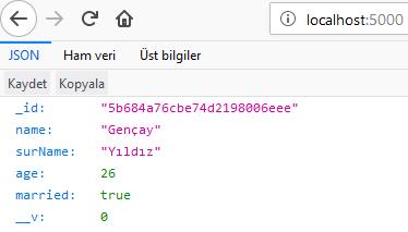 Node.js - MongoDB'ye Mongoose İle Şema Oluşturma ve Kayıt Ekleme