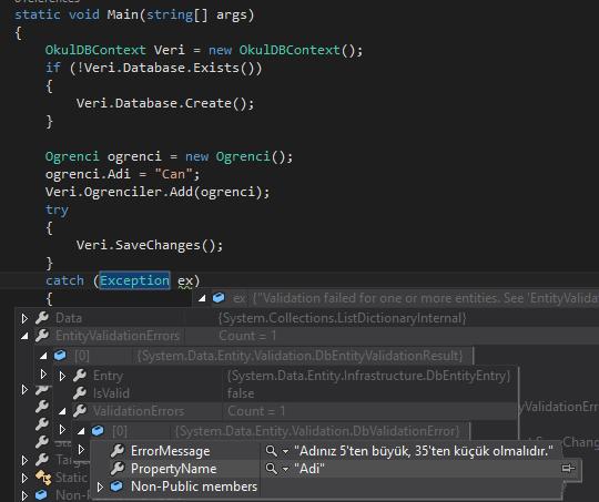 Entity Framework - Code First'te IValidatableObject Ä°le Kolonlara Validasyon Ayarlama