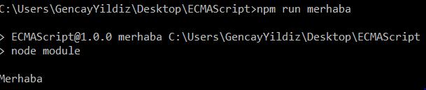 Node Paket Yöneticisi (NPM) - Script Tanımlama