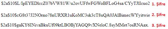 Node.js - bcrypt Modülü İle Parola Şifreleme