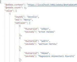 Asp.NET Core WEB API - OData Query Options