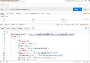 Asp.NET Core Web API Uygulamasına OData Implementasyonu